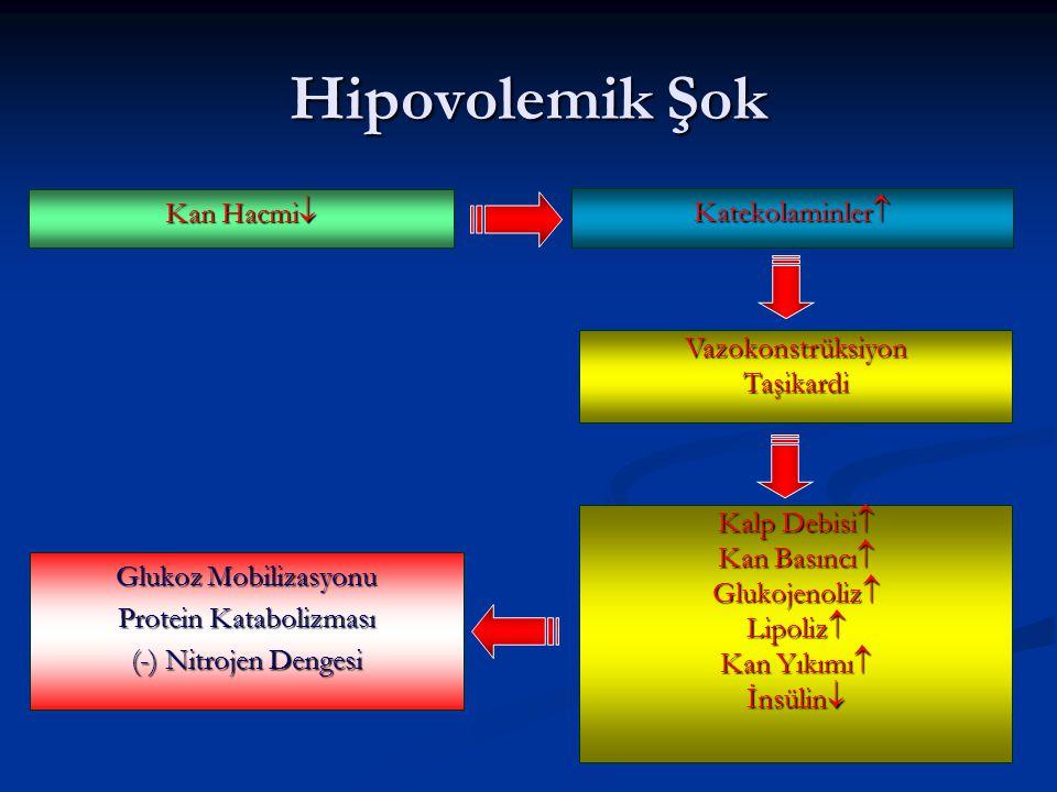 Kan Hacmi  Katekolaminler  Hipovolemik Şok VazokonstrüksiyonTaşikardi Glukoz Mobilizasyonu Protein Katabolizması (-) Nitrojen Dengesi Kalp Debisi  Kan Basıncı  Glukojenoliz  Lipoliz  Kan Yıkımı  İnsülin 