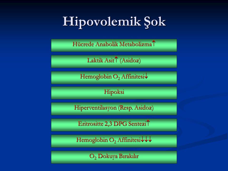 Hücrede Anabolik Metabolizma  Hipovolemik Şok Laktik Asit  (Asidoz) Hemoglobin O 2 Affinitesi  Hipoksi Hiperventilasyon (Resp. Asidoz) Eritrositte