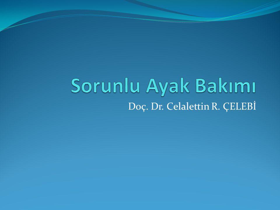 Doç. Dr. Celalettin R. ÇELEBİ