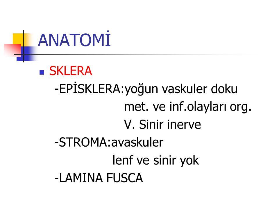 ANATOMİ SKLERA -EPİSKLERA:yoğun vaskuler doku met. ve inf.olayları org. V. Sinir inerve -STROMA:avaskuler lenf ve sinir yok -LAMINA FUSCA