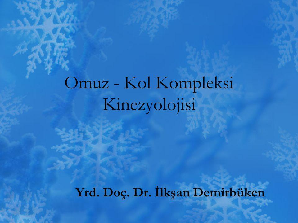 Omuz - Kol Kompleksi Kinezyolojisi Yrd. Doç. Dr. İlkşan Demirbüken