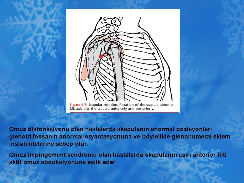 Omuz disfonksiyonu olan hastalarda skapulanın anormal pozisyonları glenoid fossanın anormal oryantasyonuna ve böylelikle glenohumeral eklem instabilit