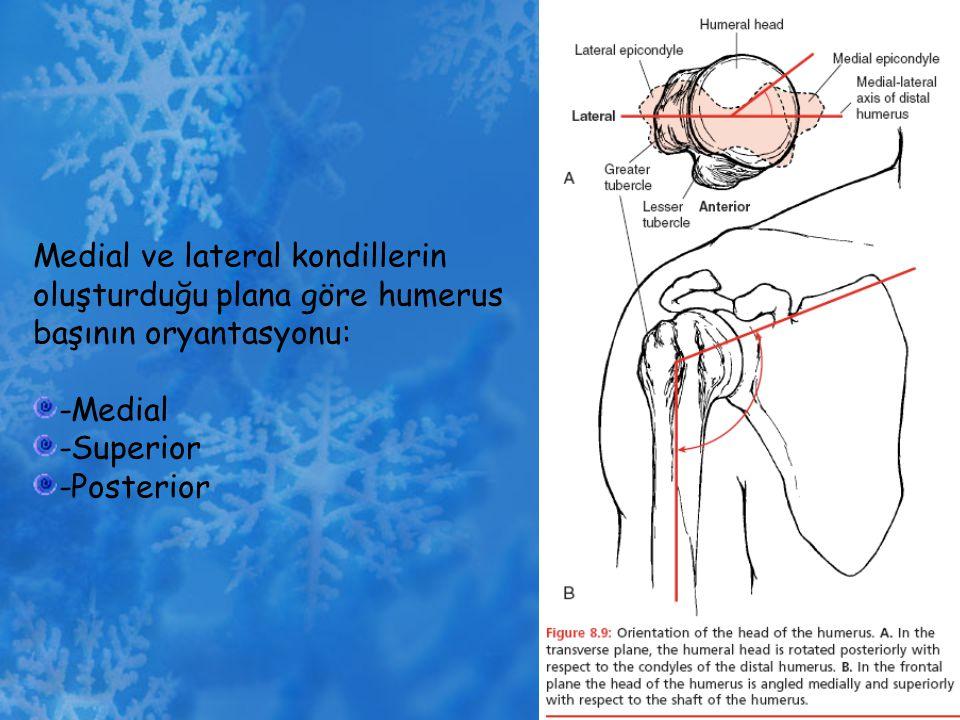 Medial ve lateral kondillerin oluşturduğu plana göre humerus başının oryantasyonu: -Medial -Superior -Posterior