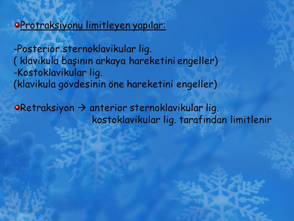 Protraksiyonu limitleyen yapılar: -Posterior sternoklavikular lig. ( klavikula başının arkaya hareketini engeller) -Kostoklavikular lig. (klavikula gö