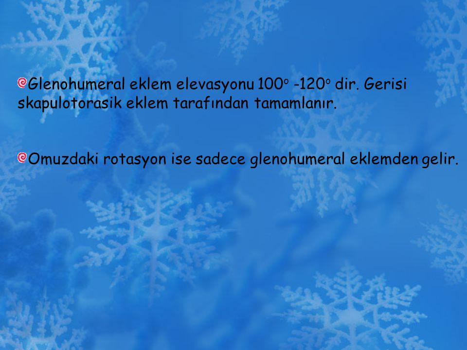 Glenohumeral eklem elevasyonu 100 o -120 o dir. Gerisi skapulotorasik eklem tarafından tamamlanır. Omuzdaki rotasyon ise sadece glenohumeral eklemden