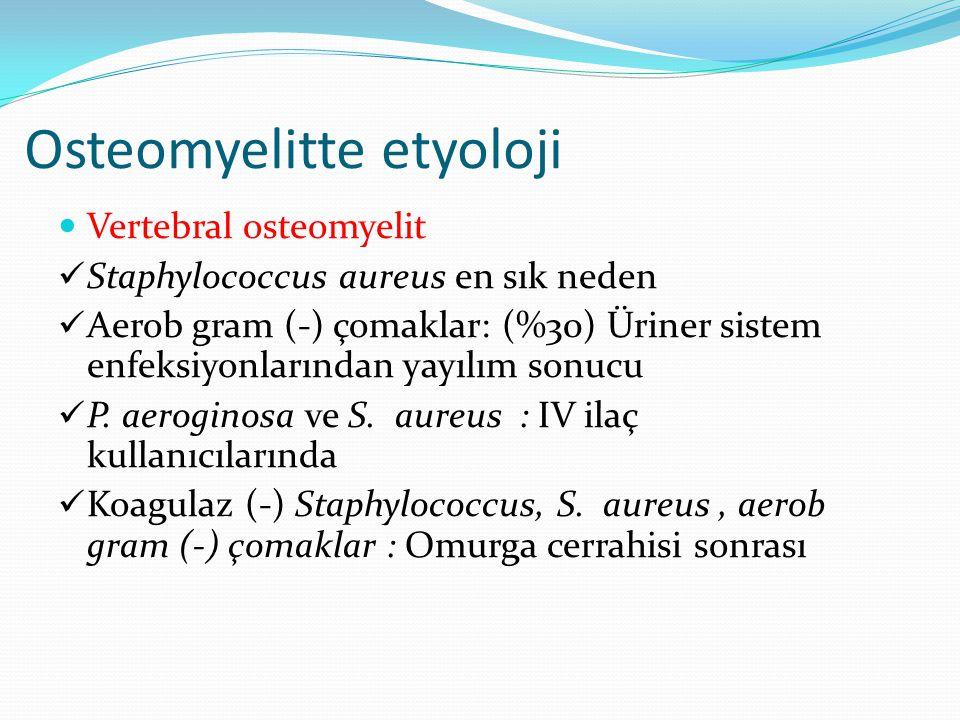 Osteomyelitte etyoloji Vertebral osteomyelit Staphylococcus aureus en sık neden Aerob gram (-) çomaklar: (%30) Üriner sistem enfeksiyonlarından yayılım sonucu P.