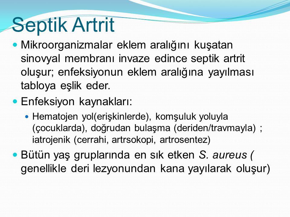Septik Artrit Mikroorganizmalar eklem aralığını kuşatan sinovyal membranı invaze edince septik artrit oluşur; enfeksiyonun eklem aralığına yayılması tabloya eşlik eder.