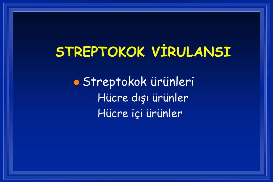STREPTOKOK VİRULANSI l Streptokok ürünleri Hücre dışı ürünler Hücre içi ürünler