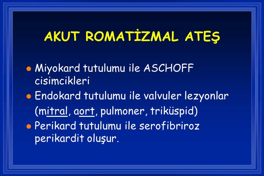 AKUT ROMATİZMAL ATEŞ l Miyokard tutulumu ile ASCHOFF cisimcikleri l Endokard tutulumu ile valvuler lezyonlar (mitral, aort, pulmoner, triküspid) l Per