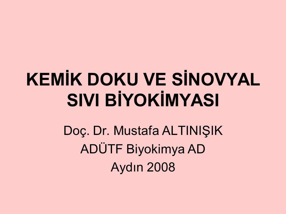 KEMİK DOKU VE SİNOVYAL SIVI BİYOKİMYASI Doç. Dr. Mustafa ALTINIŞIK ADÜTF Biyokimya AD Aydın 2008
