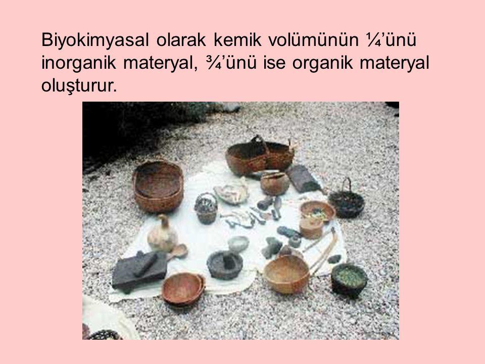 Biyokimyasal olarak kemik volümünün ¼'ünü inorganik materyal, ¾'ünü ise organik materyal oluşturur.