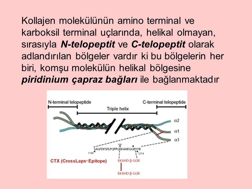 Kollajen molekülünün amino terminal ve karboksil terminal uçlarında, helikal olmayan, sırasıyla N-telopeptit ve C-telopeptit olarak adlandırılan bölgeler vardır ki bu bölgelerin her biri, komşu molekülün helikal bölgesine piridinium çapraz bağları ile bağlanmaktadır