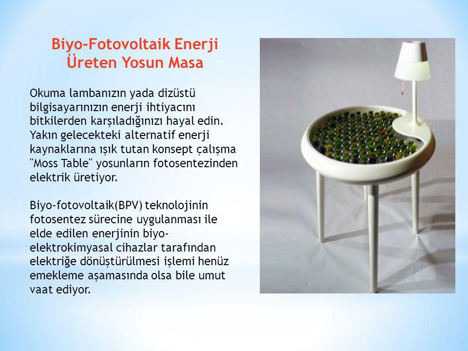Biyo-Fotovoltaik Enerji Üreten Yosun Masa Okuma lambanızın yada dizüstü bilgisayarınızın enerji ihtiyacını bitkilerden karşıladığınızı hayal edin. Yak