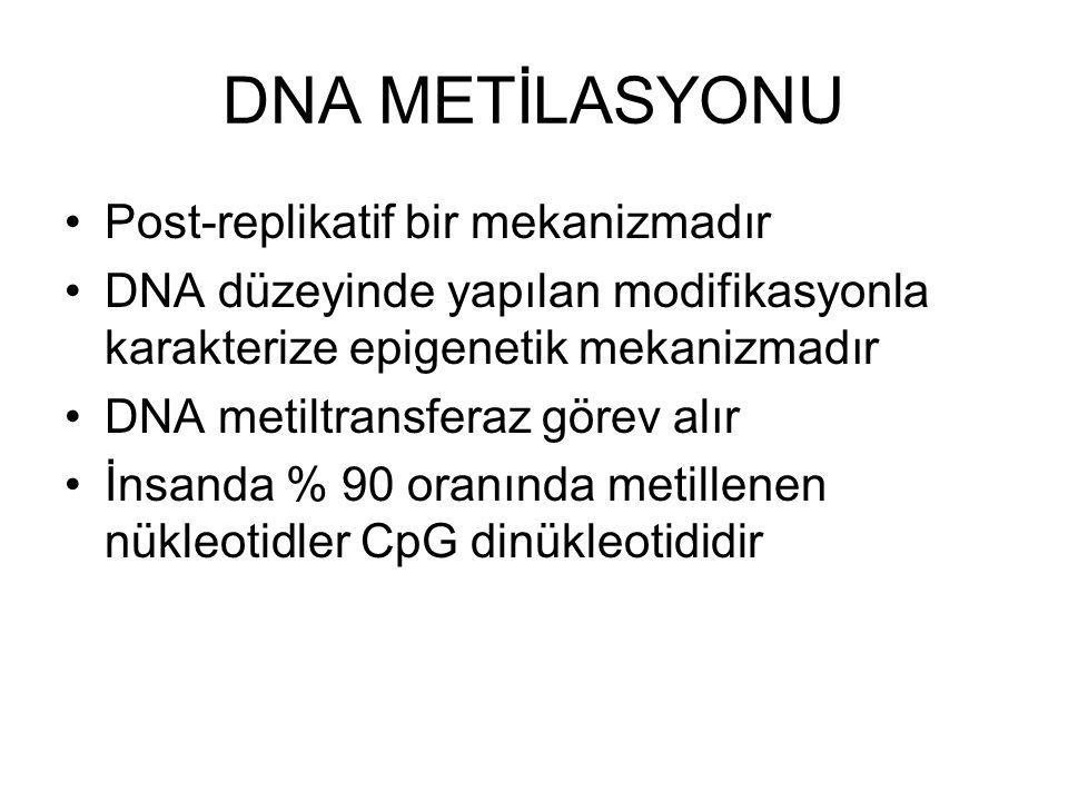 DNA METİLASYONU Post-replikatif bir mekanizmadır DNA düzeyinde yapılan modifikasyonla karakterize epigenetik mekanizmadır DNA metiltransferaz görev alır İnsanda % 90 oranında metillenen nükleotidler CpG dinükleotididir