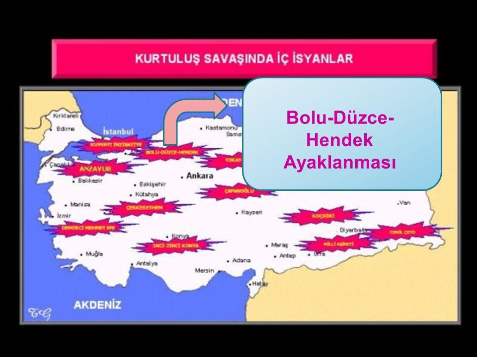 Bolu-Düzce- Hendek Ayaklanması