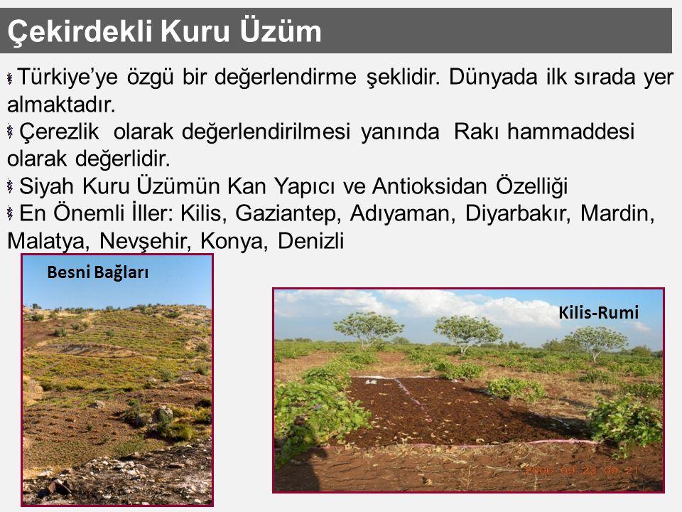 Çekirdekli Kuru Üzüm Türkiye'ye özgü bir değerlendirme şeklidir.
