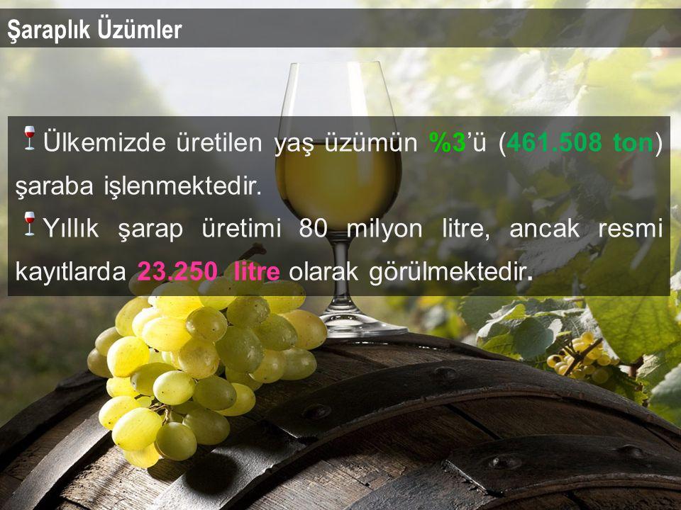 Şaraplık Üzümler Ülkemizde üretilen yaş üzümün %3'ü (461.508 ton) şaraba işlenmektedir.