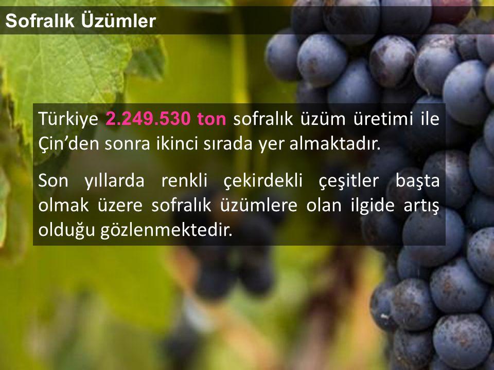 Sofralık Üzümler Türkiye 2.249.530 ton sofralık üzüm üretimi ile Çin'den sonra ikinci sırada yer almaktadır.