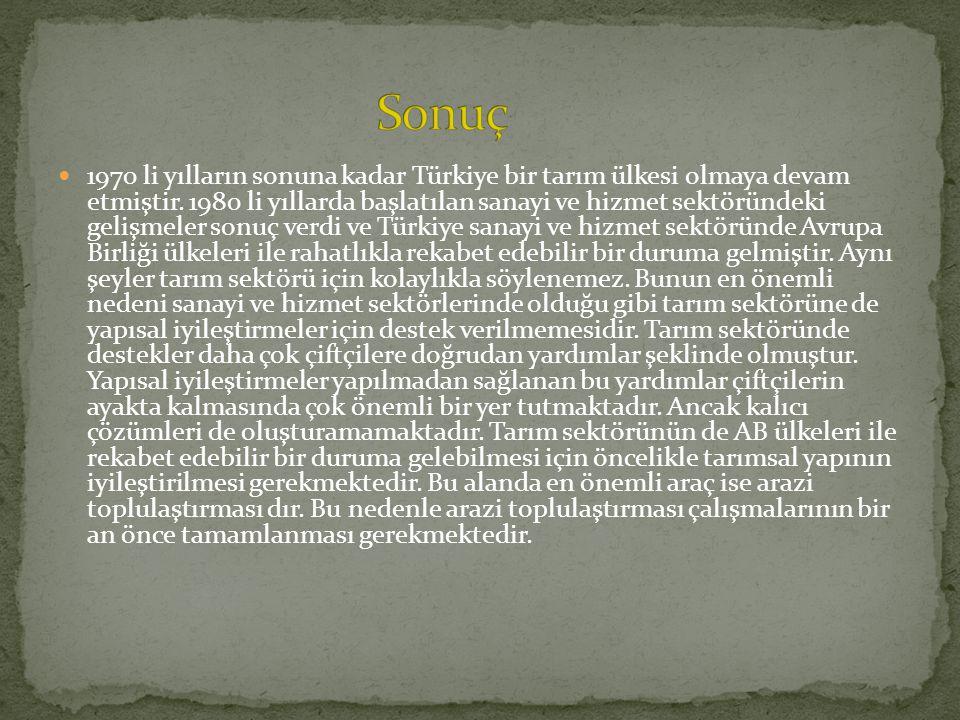 1970 li yılların sonuna kadar Türkiye bir tarım ülkesi olmaya devam etmiştir. 1980 li yıllarda başlatılan sanayi ve hizmet sektöründeki gelişmeler son