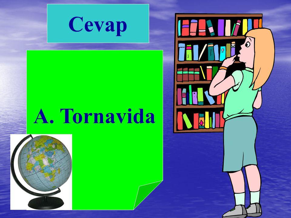 C. Yazı tahtası B. Öğretmen dolabıA. Tornavida 6) Aşağıdakilerden hangisi sınıfımızda bulunan eşyalardan değildir ?