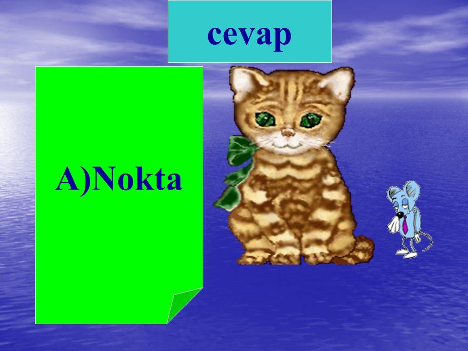 3) Güzel mi güzel bir kedim var. Cümlenin sonuna hangi noktalama işareti konmalıdır? A. Nokta B. Soru işareti C. İki nokta