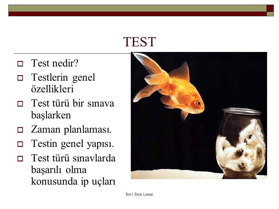 TEST  Test nedir.
