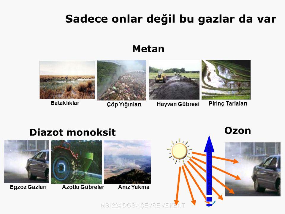 MSI 224 DOĞA ÇEVRE VE KENT Yaşam düşmanı ozon Ozon Diazot monoksit Egzoz Gazları Azotlu Gübreler Anız Yakma Metan Çöp Yığınları Hayvan Gübresi Pirinç
