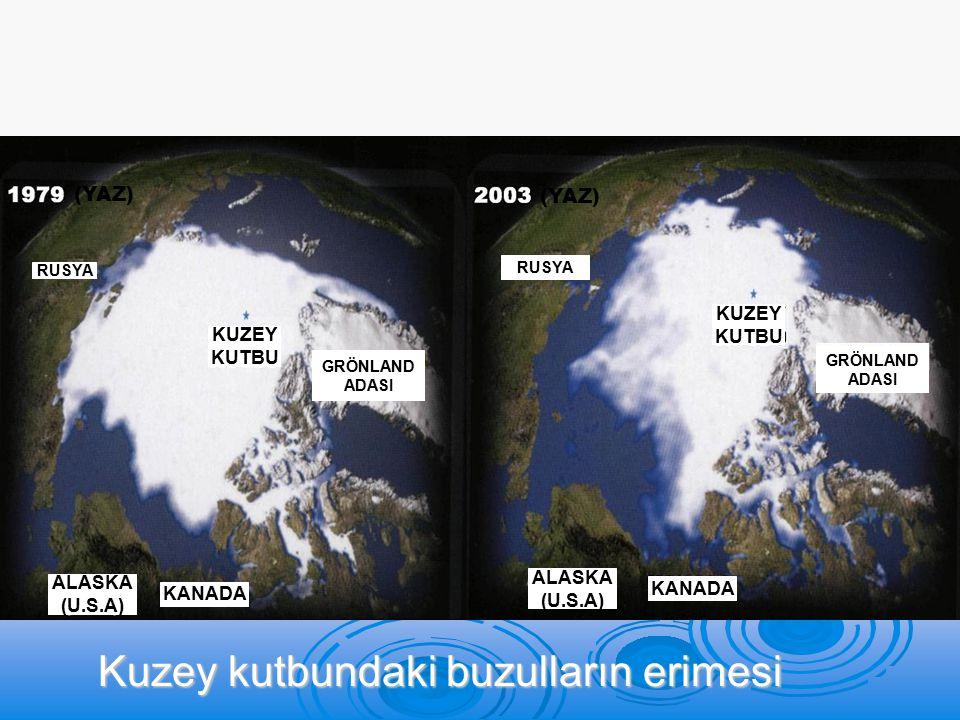 RUSYA KUZEY KUTBU KANADA ALASKA (U.S.A) GRÖNLAND ADASI Kuzey kutbundaki buzulların erimesi RUSYA KUZEY KUTBU KANADA ALASKA (U.S.A) GRÖNLAND ADASI (YAZ