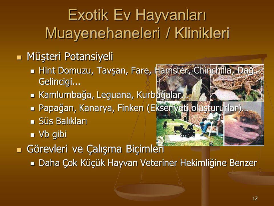 12 Exotik Ev Hayvanları Muayenehaneleri / Klinikleri Müşteri Potansiyeli Müşteri Potansiyeli Hint Domuzu, Tavşan, Fare, Hamster, Chinchilla, Dağ Gelin