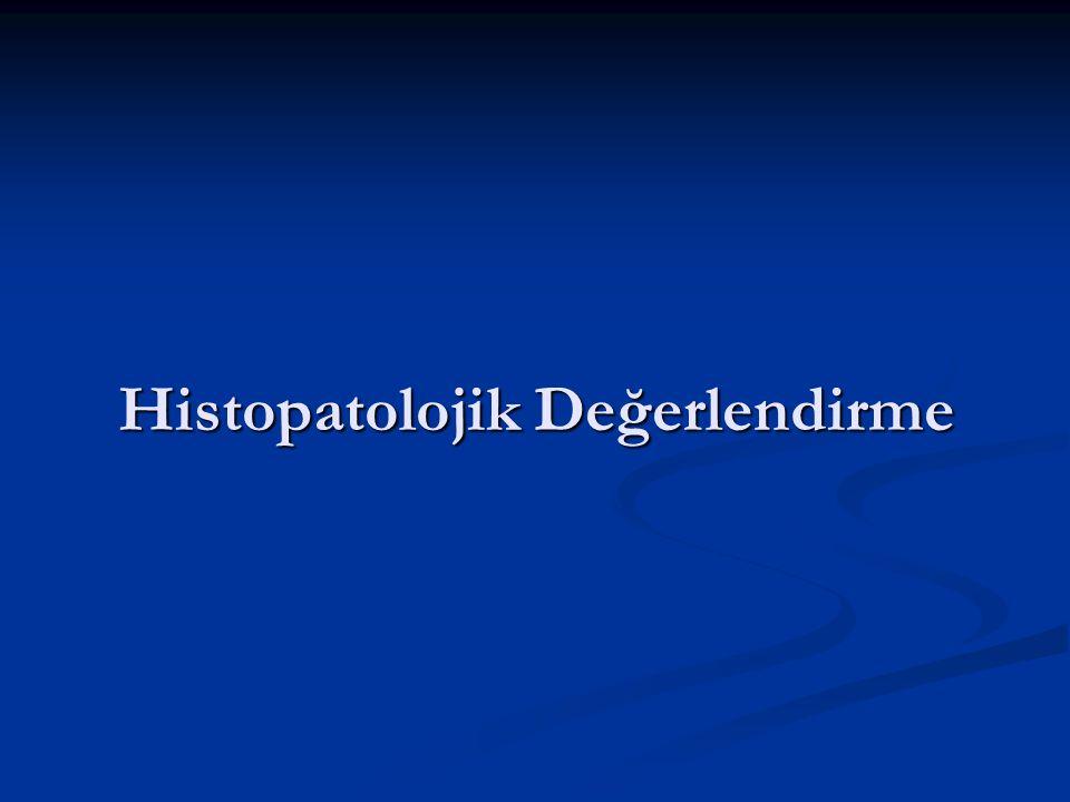 Histopatolojik Değerlendirme