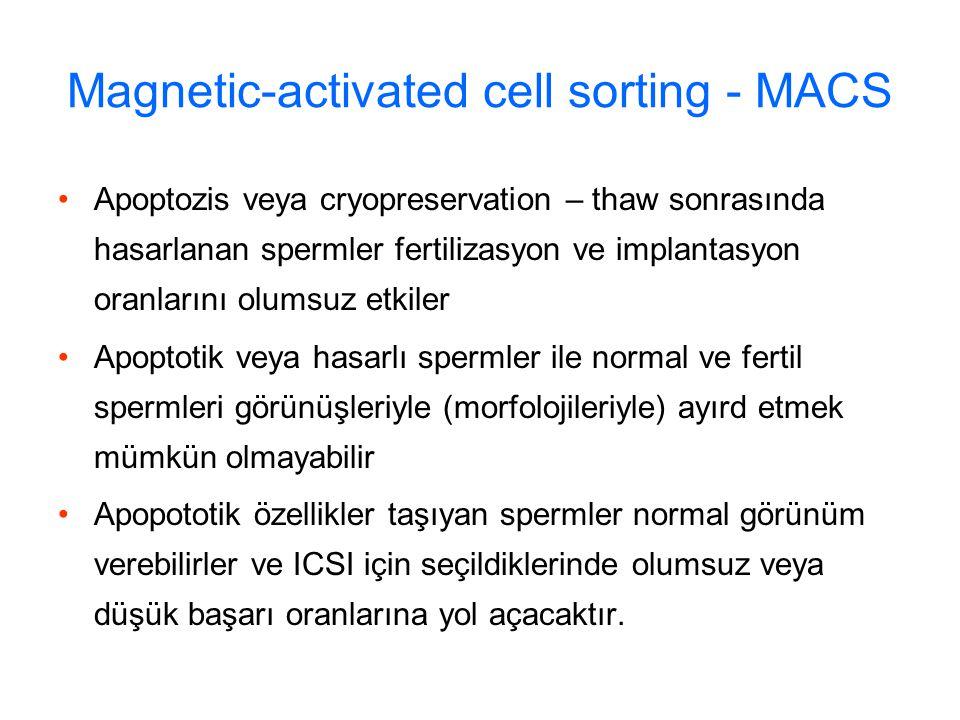 Magnetic-activated cell sorting - MACS Apoptozis veya cryopreservation – thaw sonrasında hasarlanan spermler fertilizasyon ve implantasyon oranlarını olumsuz etkiler Apoptotik veya hasarlı spermler ile normal ve fertil spermleri görünüşleriyle (morfolojileriyle) ayırd etmek mümkün olmayabilir Apopototik özellikler taşıyan spermler normal görünüm verebilirler ve ICSI için seçildiklerinde olumsuz veya düşük başarı oranlarına yol açacaktır.