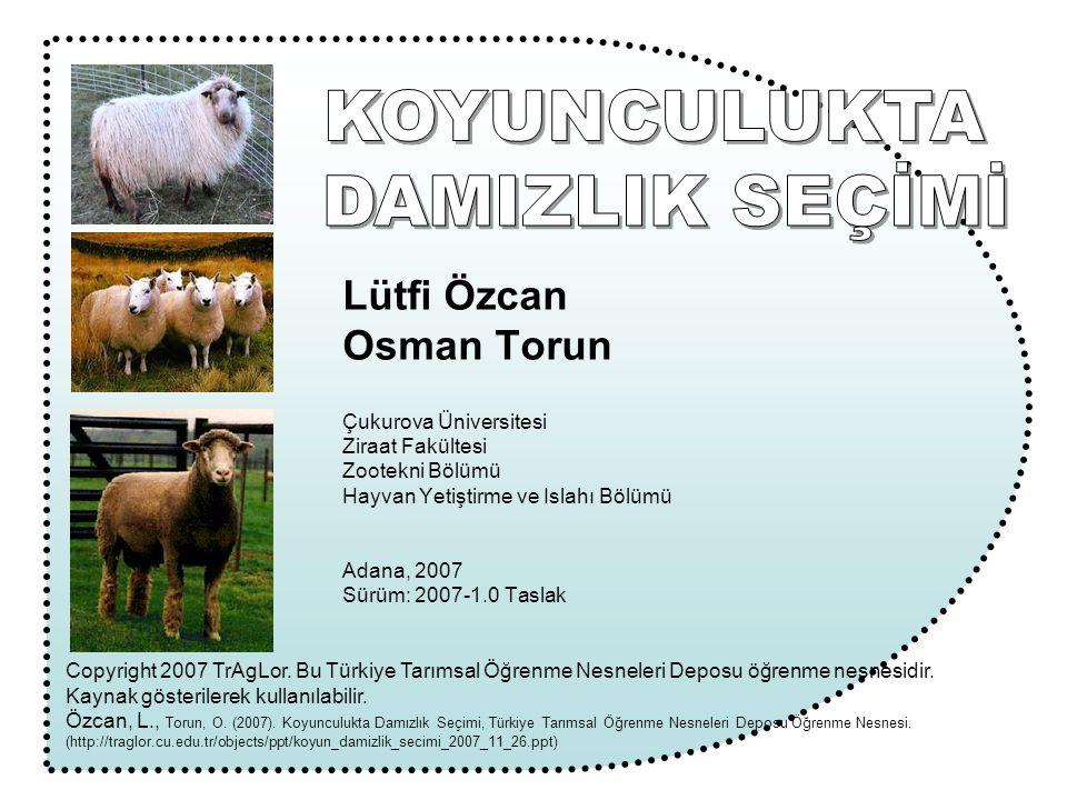 Lütfi Özcan Osman Torun Çukurova Üniversitesi Ziraat Fakültesi Zootekni Bölümü Hayvan Yetiştirme ve Islahı Bölümü Adana, 2007 Sürüm: 2007-1.0 Taslak C