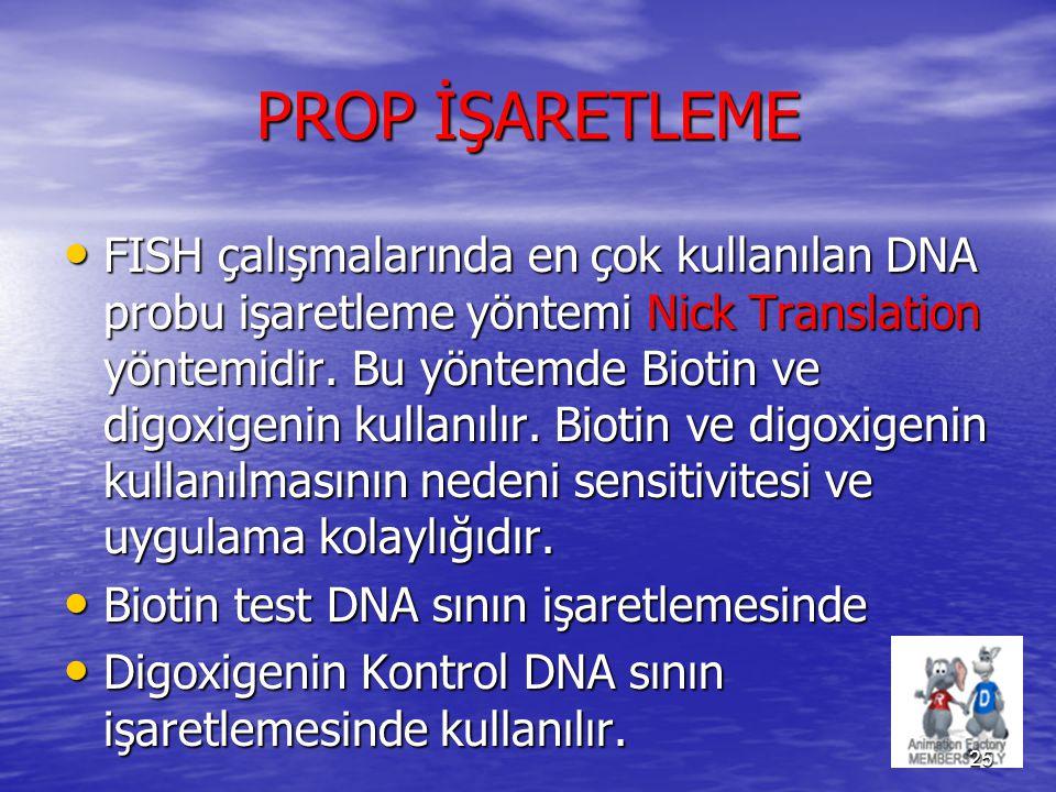 PROP İŞARETLEME FISH çalışmalarında en çok kullanılan DNA probu işaretleme yöntemi Nick Translation yöntemidir. Bu yöntemde Biotin ve digoxigenin kull