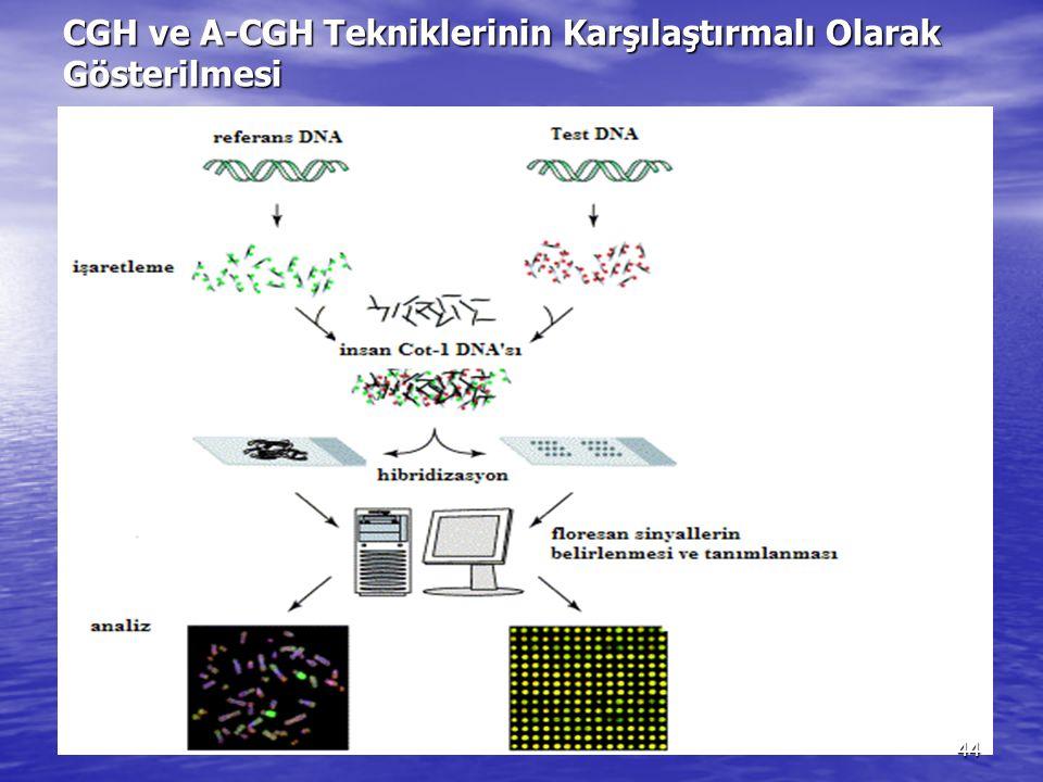 CGH ve A-CGH Tekniklerinin Karşılaştırmalı Olarak Gösterilmesi 44