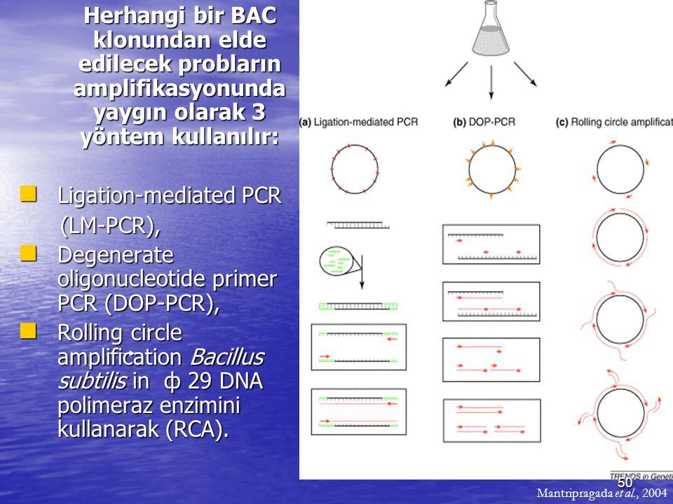 Herhangi bir BAC klonundan elde edilecek probların amplifikasyonunda yaygın olarak 3 yöntem kullanılır: Herhangi bir BAC klonundan elde edilecek probl