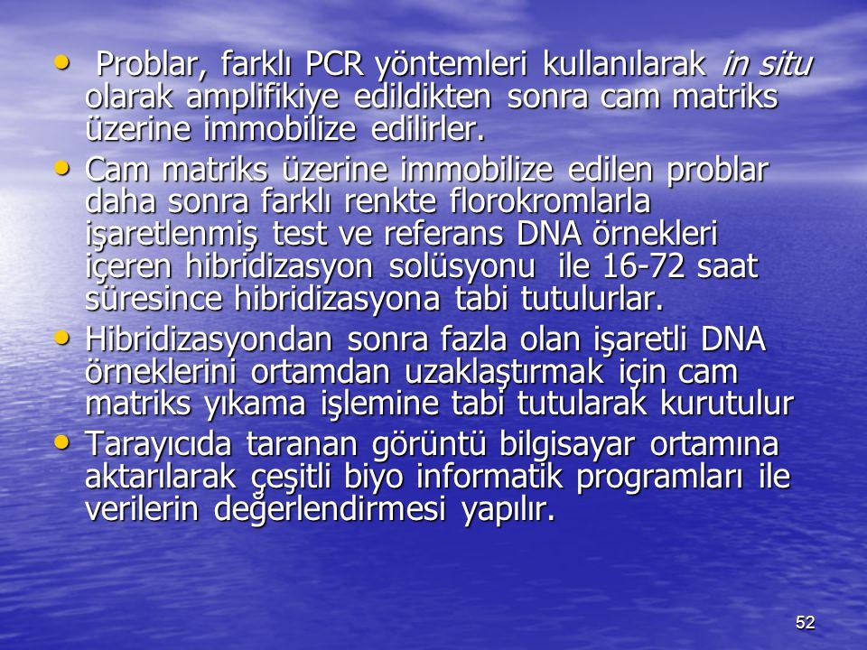 Problar, farklı PCR yöntemleri kullanılarak in situ olarak amplifikiye edildikten sonra cam matriks üzerine immobilize edilirler. Problar, farklı PCR