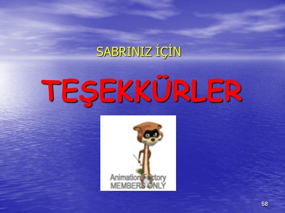 TEŞEKKÜRLER SABRINIZ İÇİN 58