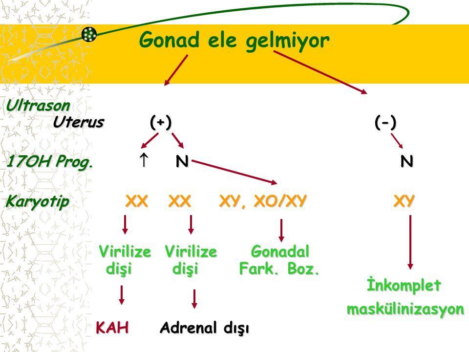 Gonad ele gelmiyorUltrason Uterus (+) (-) 17OH Prog.  N N Karyotip XX XX XY, XO/XY XY Virilize Virilize Gonadal dişi dişiFark. Boz. İnkomplet İnkompl