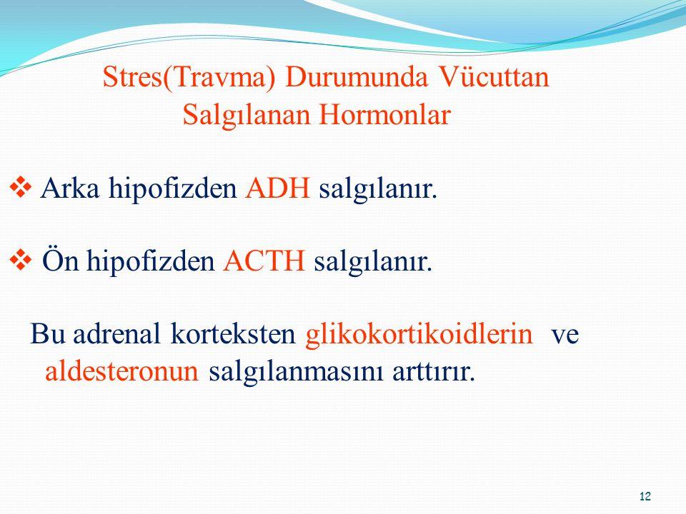 12 Stres(Travma) Durumunda Vücuttan Salgılanan Hormonlar  Arka hipofizden ADH salgılanır.  Ön hipofizden ACTH salgılanır. Bu adrenal korteksten glik