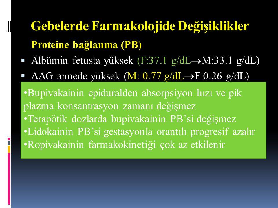Gebelerde Farmakolojide Değişiklikler Proteine bağlanma (PB)  Albümin fetusta yüksek (F:37.1 g/dL  M:33.1 g/dL)  AAG annede yüksek (M: 0.77 g/dL 