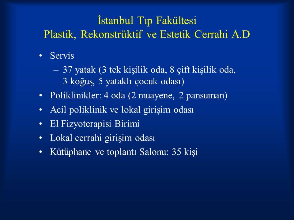 İstanbul Tıp Fakültesi Plastik, Rekonstrüktif ve Estetik Cerrahi A.D Servis –37 yatak (3 tek kişilik oda, 8 çift kişilik oda, 3 koğuş, 5 yataklı çocuk odası) Poliklinikler: 4 oda (2 muayene, 2 pansuman) Acil poliklinik ve lokal girişim odası El Fizyoterapisi Birimi Lokal cerrahi girişim odası Kütüphane ve toplantı Salonu: 35 kişi