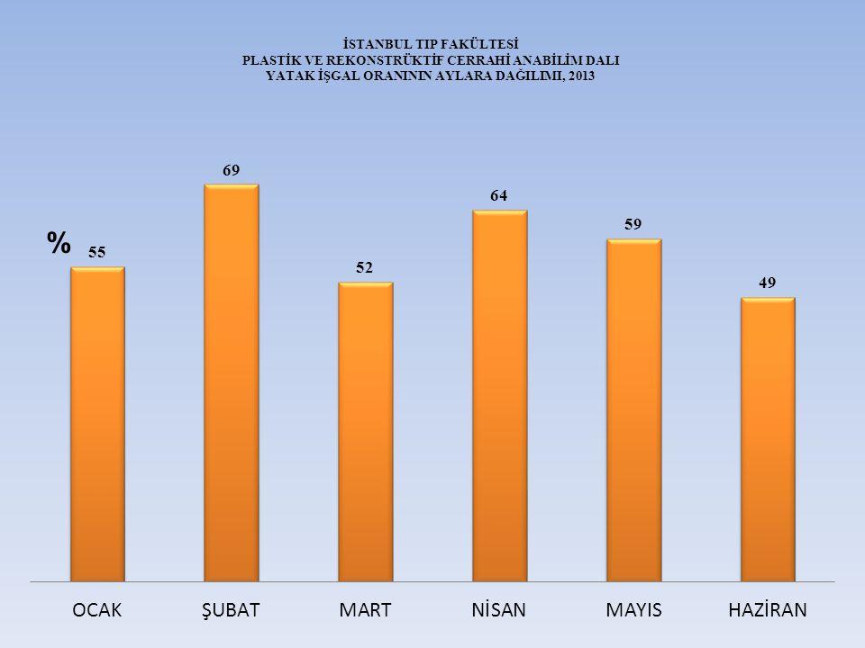 İSTANBUL TIP FAKÜLTESİ PLASTİK VE REKONSTRÜKTİF CERRAHİ ANABİLİM DALI YATAK İŞGAL ORANININ AYLARA DAĞILIMI, 2013 %