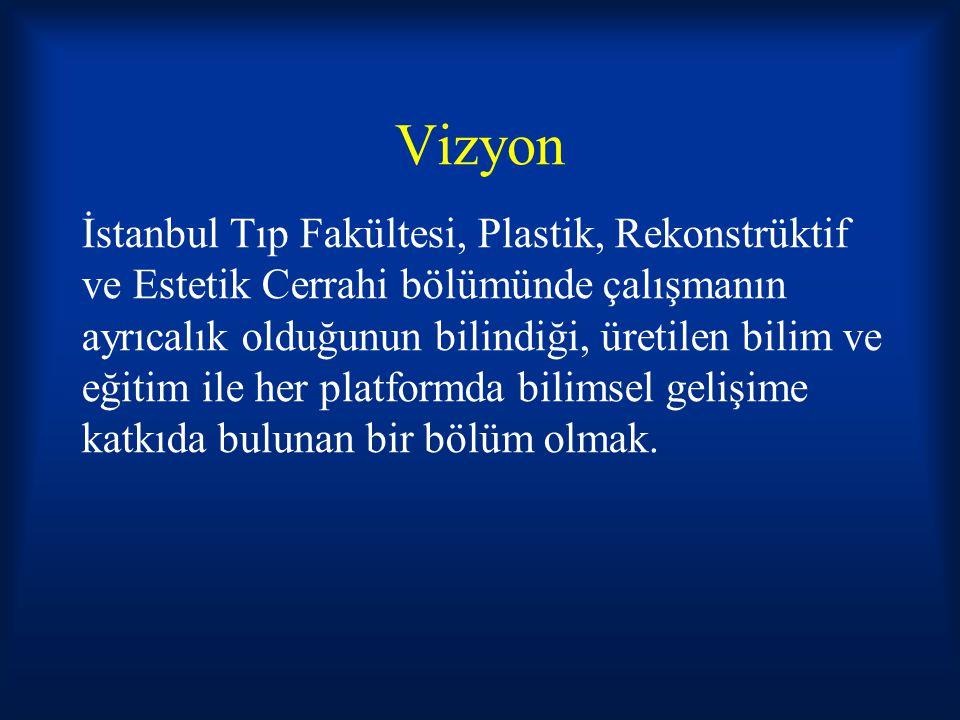 Vizyon İstanbul Tıp Fakültesi, Plastik, Rekonstrüktif ve Estetik Cerrahi bölümünde çalışmanın ayrıcalık olduğunun bilindiği, üretilen bilim ve eğitim