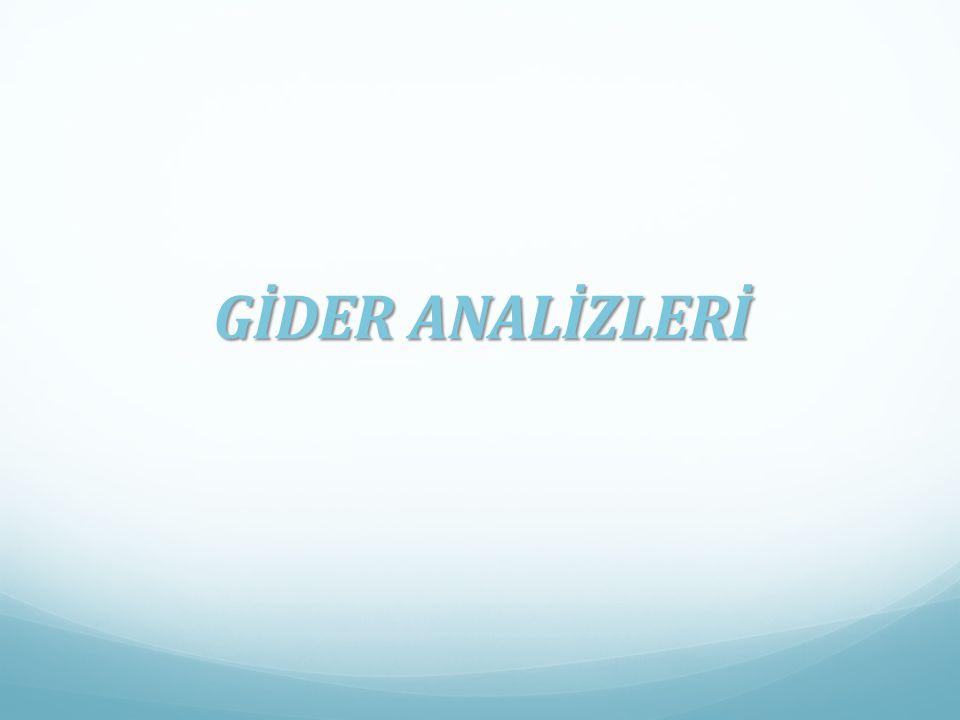 GİDER ANALİZLERİ