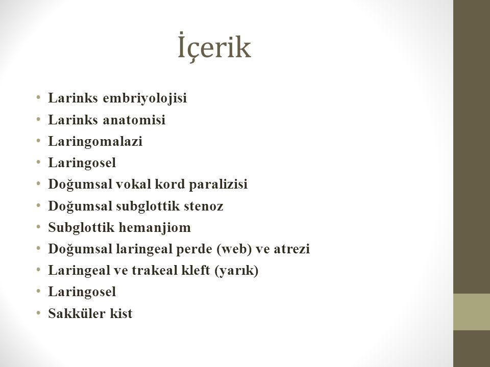 Larinks Embriyolojisi Larinksin Gelişimi 3.