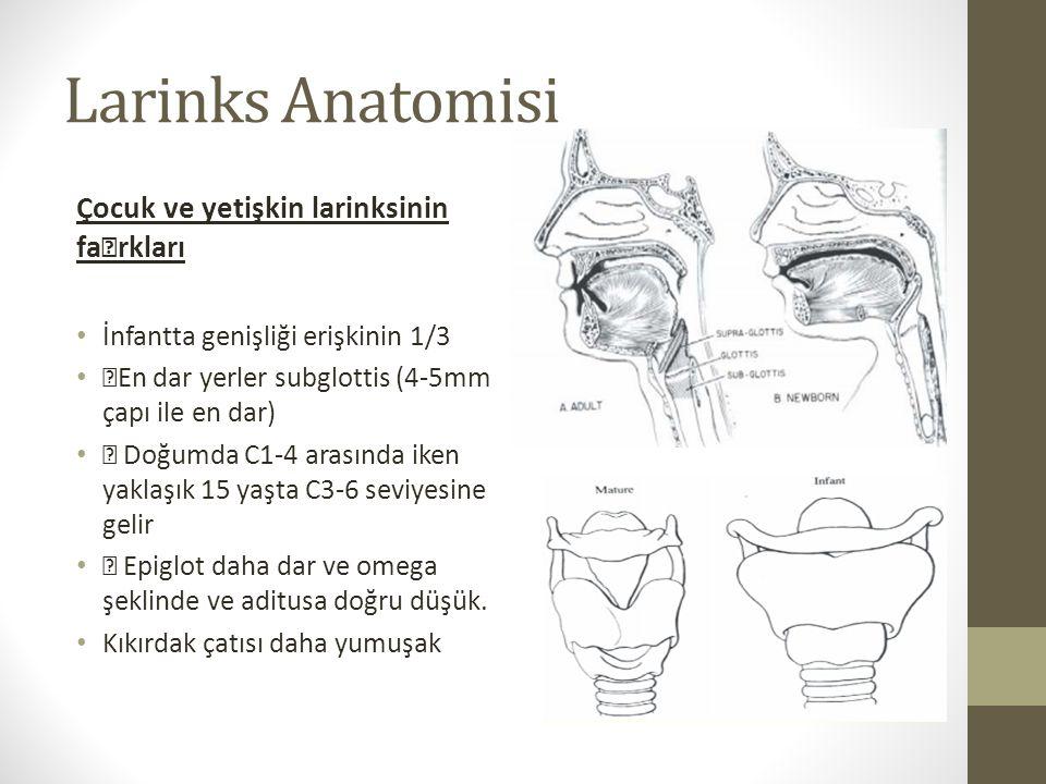 """Larinks Anatomisi Çocuk ve yetişkin larinksinin fa""""rkları İnfantta genişliği erişkinin 1/3 """"En dar yerler subglottis (4-5mm çapı ile en dar) """" Doğumda"""
