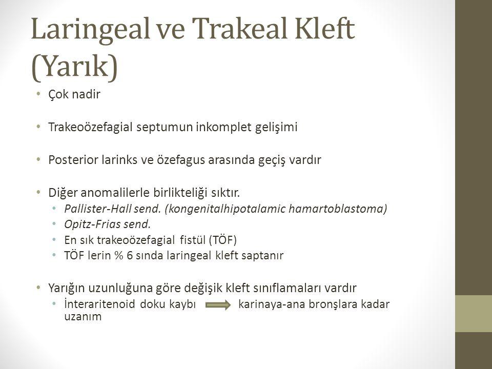 Laringeal ve Trakeal Kleft (Yarık) Çok nadir Trakeoözefagial septumun inkomplet gelişimi Posterior larinks ve özefagus arasında geçiş vardır Diğer ano