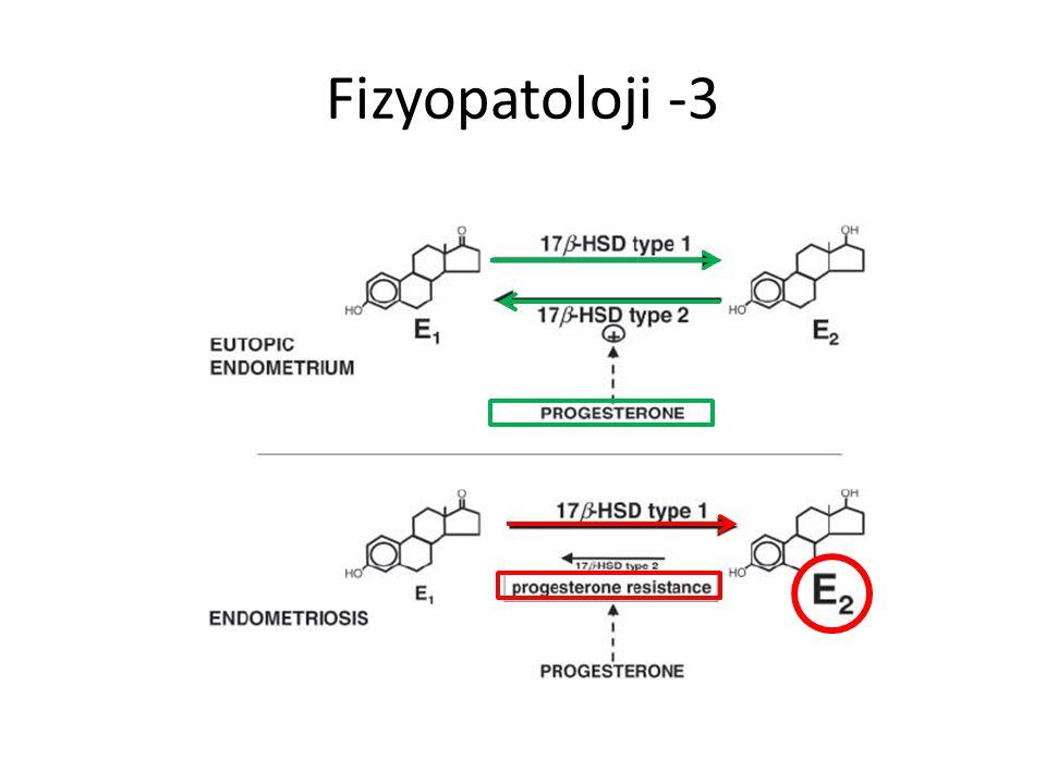 Fizyopatoloji -3