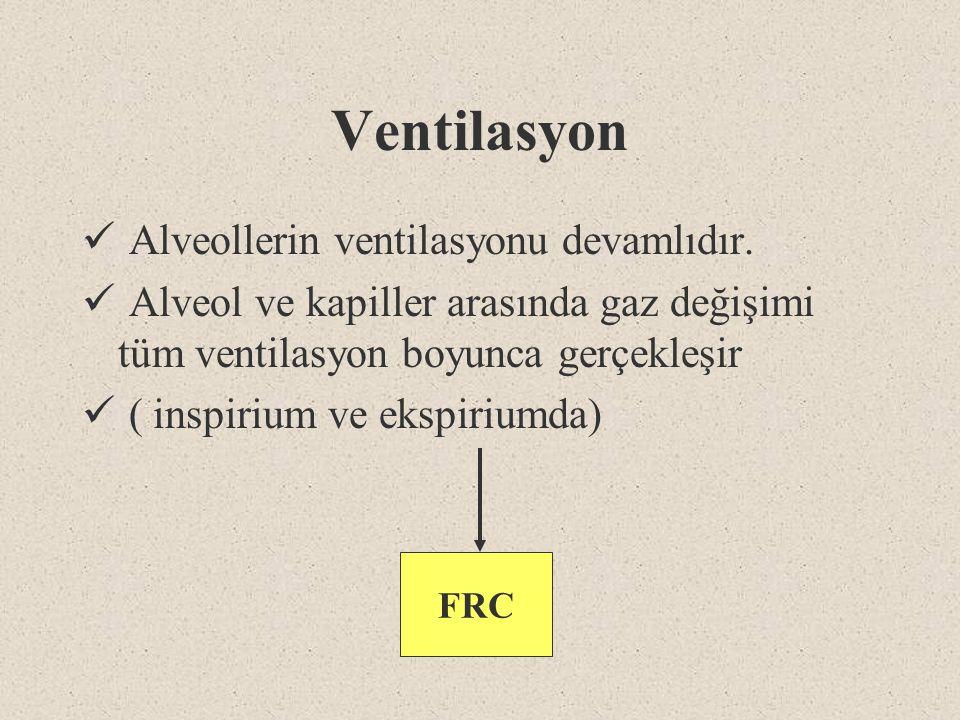 Ventilasyon Alveollerin ventilasyonu devamlıdır. Alveol ve kapiller arasında gaz değişimi tüm ventilasyon boyunca gerçekleşir ( inspirium ve ekspirium