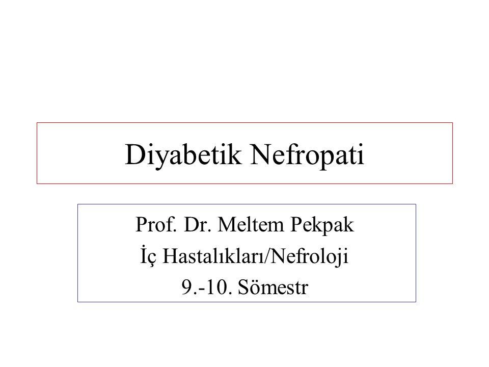 Diyabetik Nefropati Prof. Dr. Meltem Pekpak İç Hastalıkları/Nefroloji 9.-10. Sömestr
